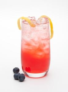 Refreshing Hiram Walker Sloe Gin Fizz